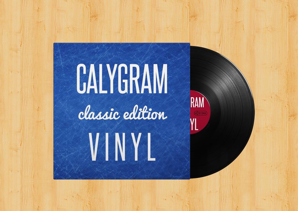 Vinyl - Record - Pressen